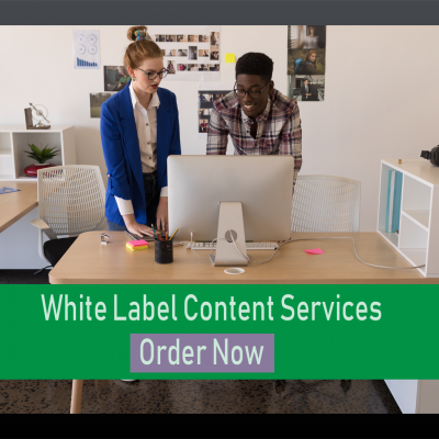 500 Word Article White Label